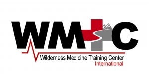 2016 WMTC-International linear logo